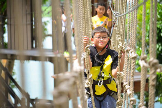 4. Take on an Obstacle Course at Forest Adventure