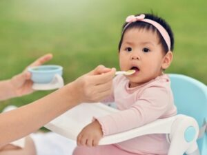 Homemade Baby Food Recipes with Kendamil