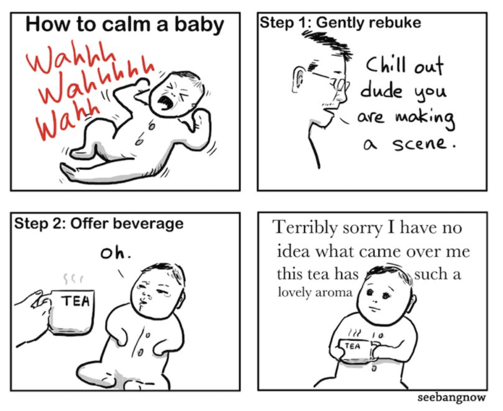5 Things Not to Say to your Children - How to calm a baby meme